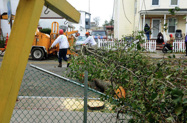 Crews from Northeast Horticulture Services remove downed trees along Newfield Avenue in Bridgeport, Conn. on Tuesday October 30, 2012. Photo: Christian Abraham