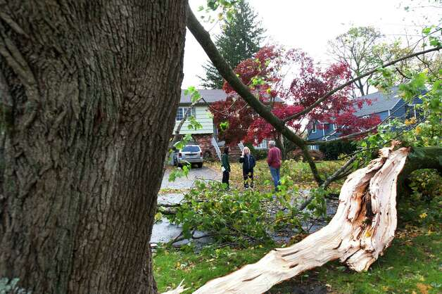 Nieghbors gather around a large tree down on Green Knolls Ln. in Stamford, Conn. on Tuesday, Oct. 30, 2012. High winds from Hurricane Sandy caused lots of damage in the lower Fairfield County towns and beyond. Photo: Mark Conrad