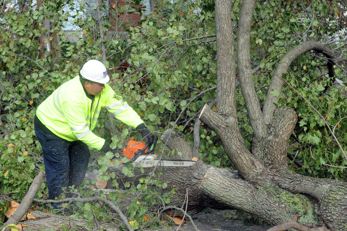 Public Works employee Joe McCorry uses a chainsaw to help remove a tree blocking Huntington Ave. in Stratford, Conn. following Hurricane Sandy Oct. 30th, 2012.