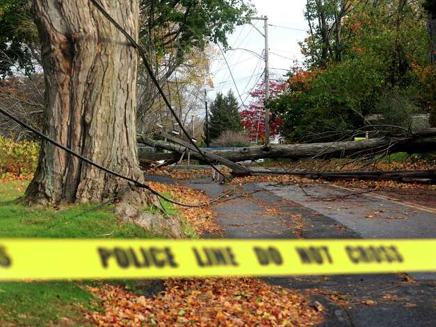 A downed tree sits on power lines closing access to Burroughs Rd. in Fairfield, Conn. on Tuesday, Oct. 30, 2012. Photo: Cathy Zuraw