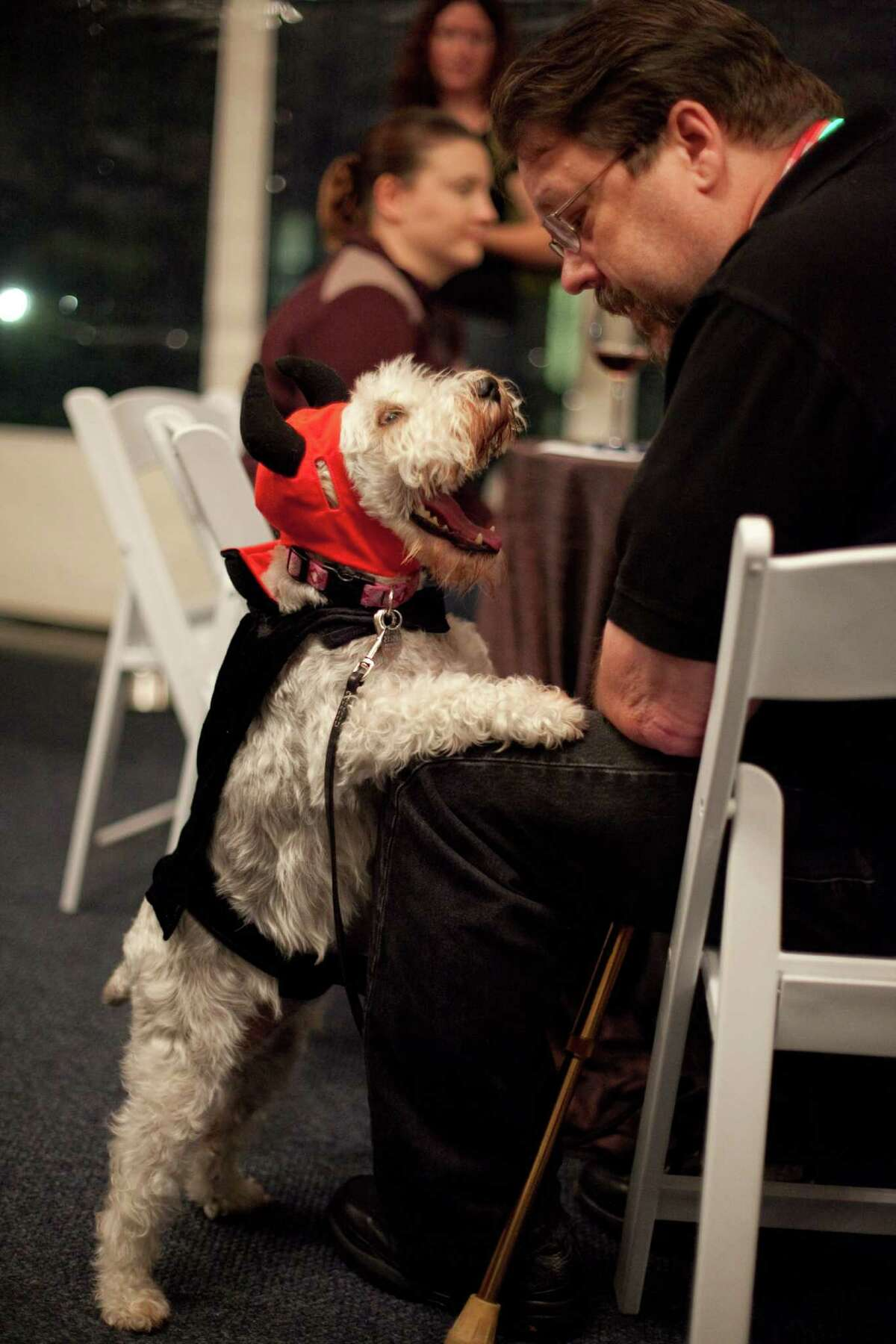 A pup rests on his owner during the CityDog Magazine inaugural Howl-at-the-Moon Muttmixer at the Woodmark Hotel in Kirkland on Tuesday, October 30th, 2012. Dozens of dogs in costume attended the event.