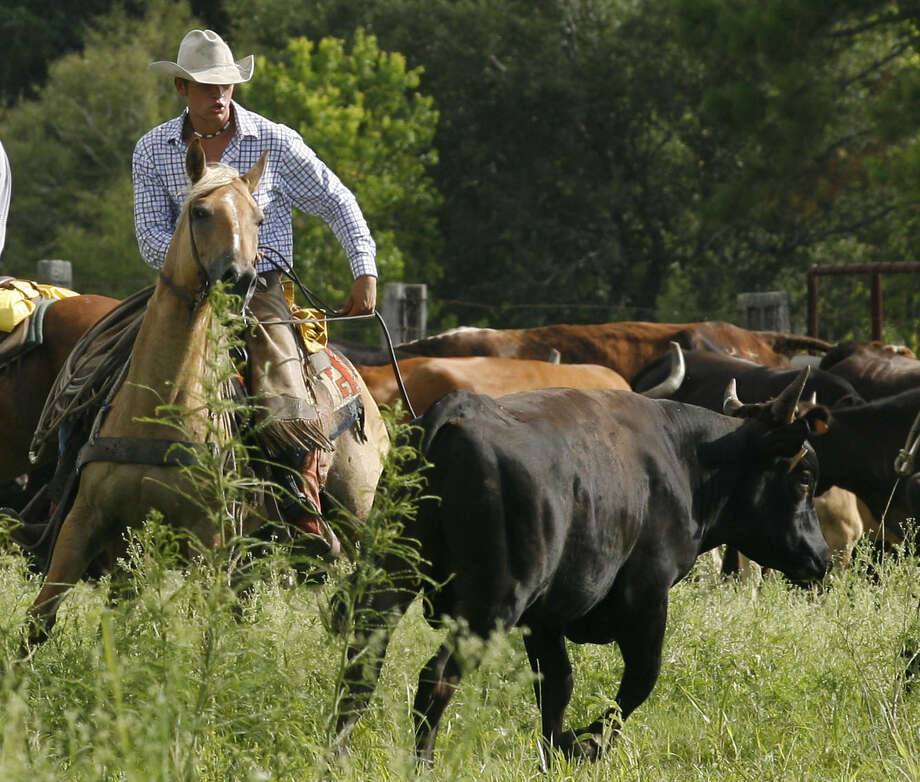 Cowboy: If you dream of living the rural life as a cowboy, you might consider a position as a rancher or farm manager. You can expect to earn between $25,000 and $35,000. Find ranching jobs and farm manager jobs.  Photo: James Nielsen, . / Houston Chronicle