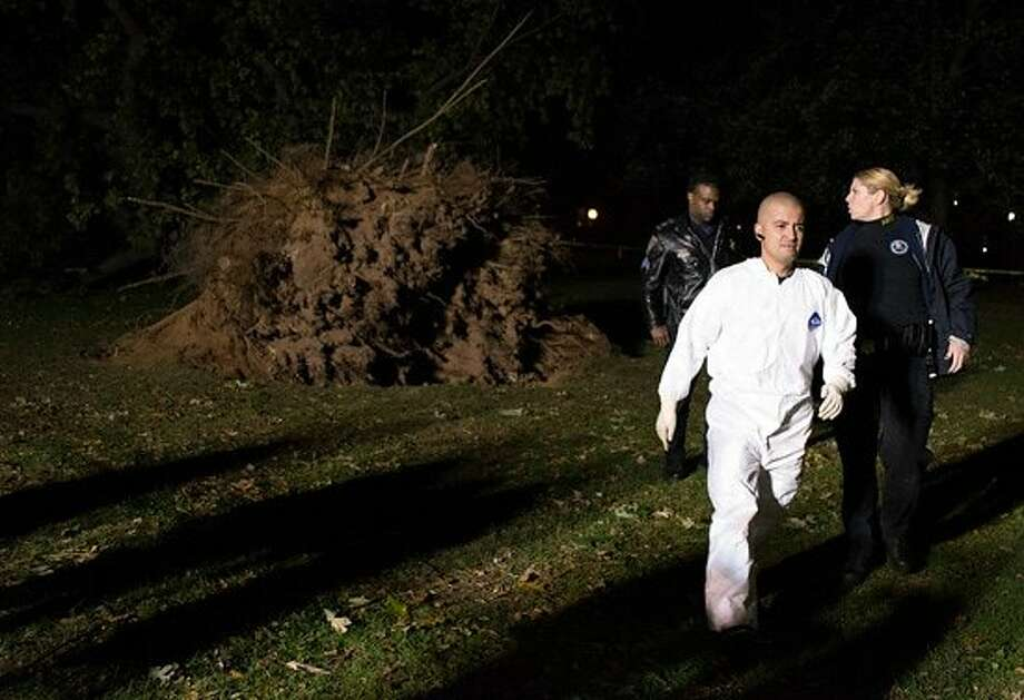 Alfredo Camargo walks away from the uprooted tree in New Haven. (Melissa Bailey / New Haven Independent)