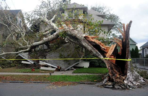 A house on Grovers Avenue is destroyed by a fallen tree from Hurricane Sandy Wednesday, Oct. 31, 2012 in Bridgeport, Conn. Photo: Autumn Driscoll