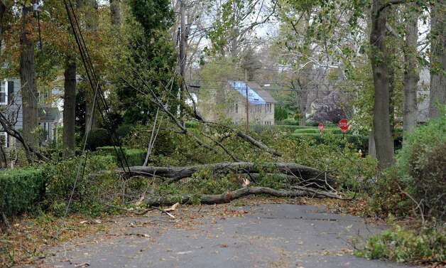 A fallen tree on Hilltop Road near Sailors Lane Wednesday, Oct. 31, 2012 in Bridgeport, Conn. Photo: Autumn Driscoll