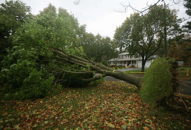 A tree down on power lines blocks Todd Drive in Milford in the aftermath of Hurricane Sandy on Wednesday, October 31, 2012. Photo: Brian A. Pounds