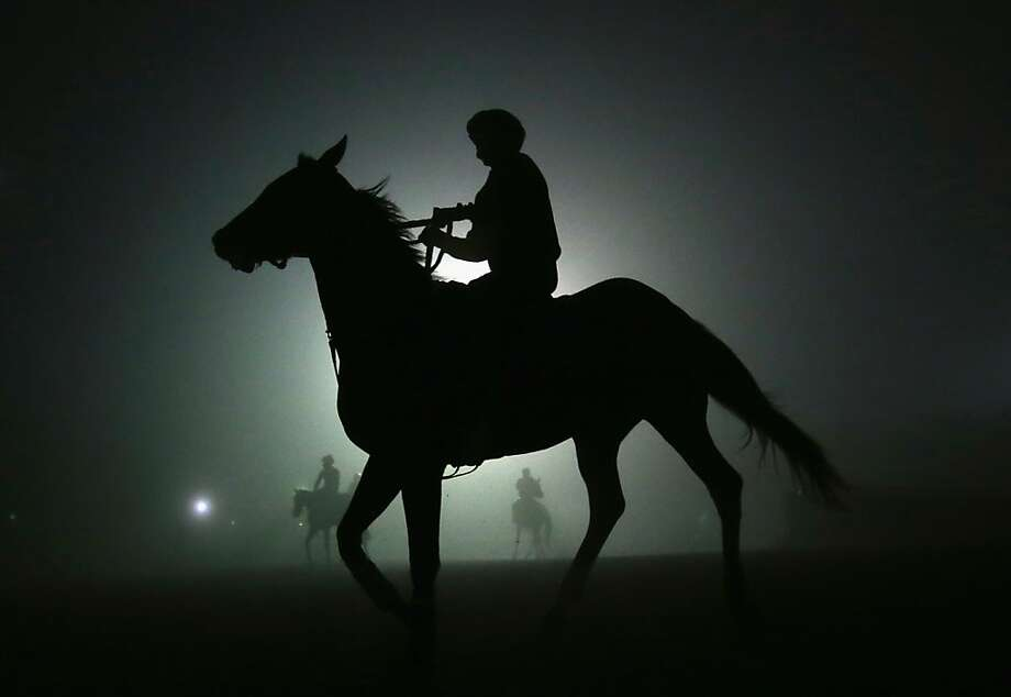 Horses walk back to the stable after training in preparation for the 2012 Breeder's Cup at Santa Anita Park on October 31, 2012 in Arcadia, California.  (Photo by Jeff Gross/Getty Images) Photo: Jeff Gross, Getty Images