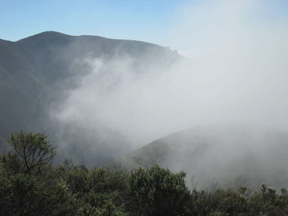 Climbing through fog at the 600- to 1,000-foot level (Tom Stienstra/The Chronicle)