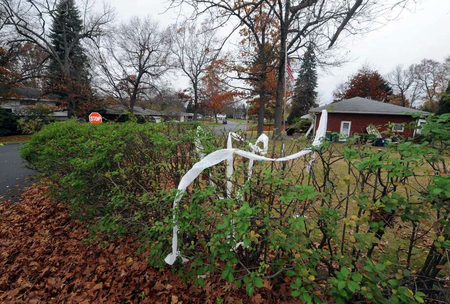 Toilet paper remains strewn in bushes on James Drive near Danielwood Drive in Colonie, NY Thursday Nov.1, 2012. (Michael P. Farrell/Times Union) Photo: Michael P. Farrell