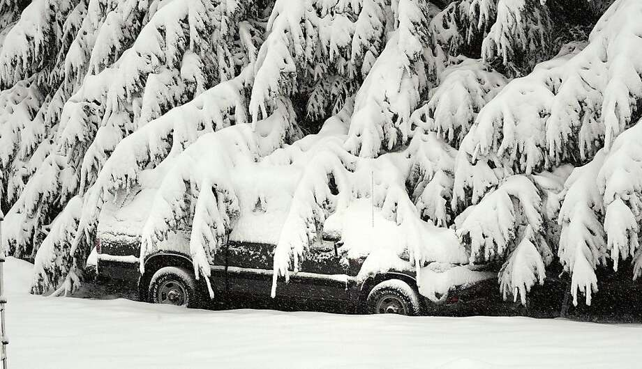 This only looks like a black-and-white photo: Snow-covered branches drape a parked car in Morgantown, W.Va. Hundreds of thousands in West Virginia spent Halloween without power. Photo: Ron Rittenhouse, Associated Press