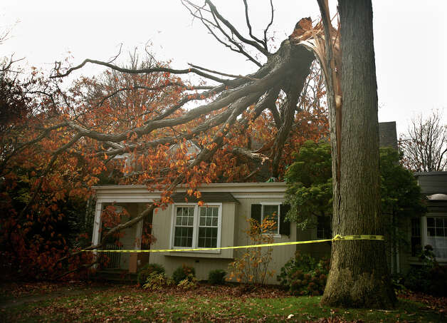 A large tree lies on a home on Crestwood Road in Fairfield in the aftermath of Hurricane Sandy on Thursday, November 1, 2012. Photo: Brian A. Pounds / Connecticut Post