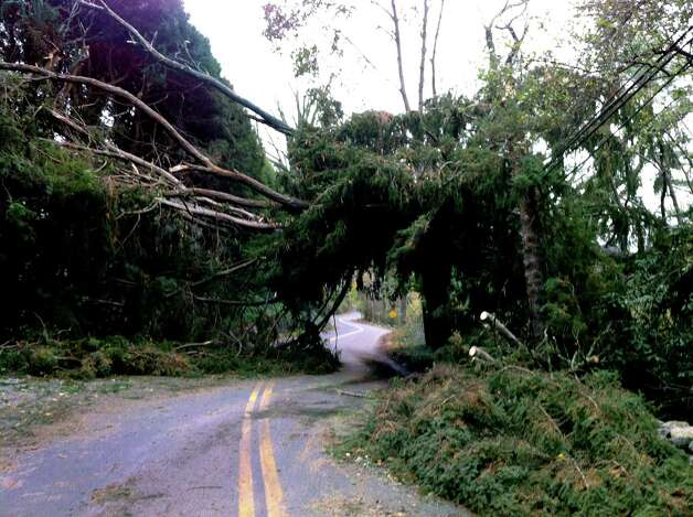 Fallen trees on Pecksland Road in Greenwich, Conn. create a tunnel big enough for only one car at a time to drive through on Nov. 1, 2012. Photo: Lisa Chamoff / Greenwich Time
