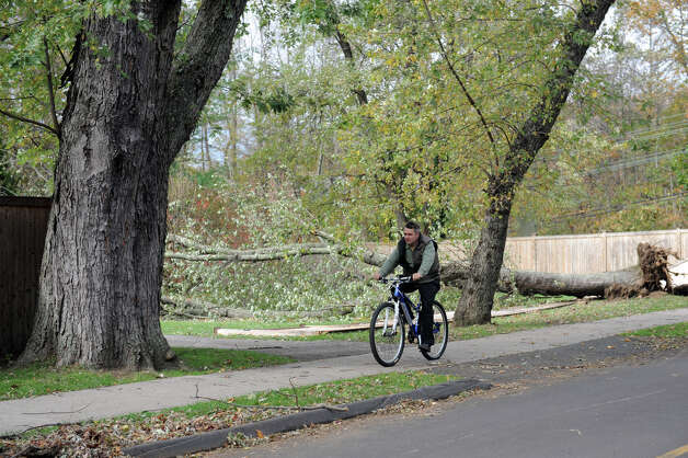 A man rides a bicycle on Drinkwater Place past a fallen tree. It was quiet afternoon after the storm in Riverside, Conn. on Thursday, Nov. 1. 2012. Photo: Helen Neafsey / Greenwich Time