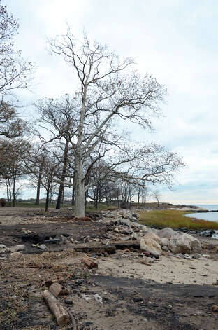 The heavily eroded edge of the shore at Cove Island Beach in Stamford photographed on Thursday, Nov. 1, 2012. Photo: Amy Mortensen / Stamford Advocate Freelance