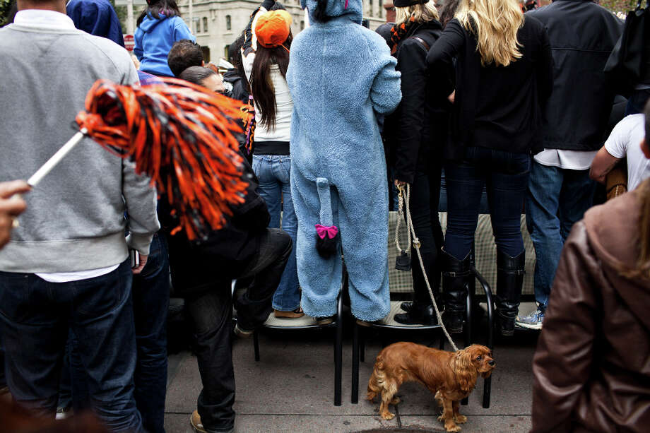 Keith Wong came dressed as Eeyore, and dragged Doc the King Charles Cavalier along for the parade. Photo: Jason Henry, Special To The Chronicle / ONLINE_YES