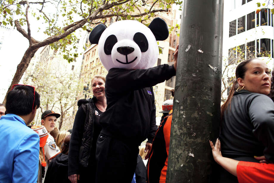 "Panda costumes and hats were especially popular at the parade in honor of Pablo ""Kung Fu Panda"" Sandoval. Photo: Jason Henry, Special To The Chronicle / ONLINE_YES"