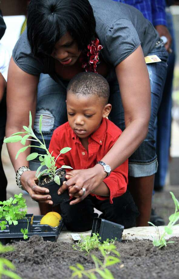 Grow one vegetable, fruit or herb at your house and eat it. Then, give the extra produce to your neighbors, friends or coworkers.  Photo: Karen Warren, Houston Chronicle / © 2012  Houston Chronicle