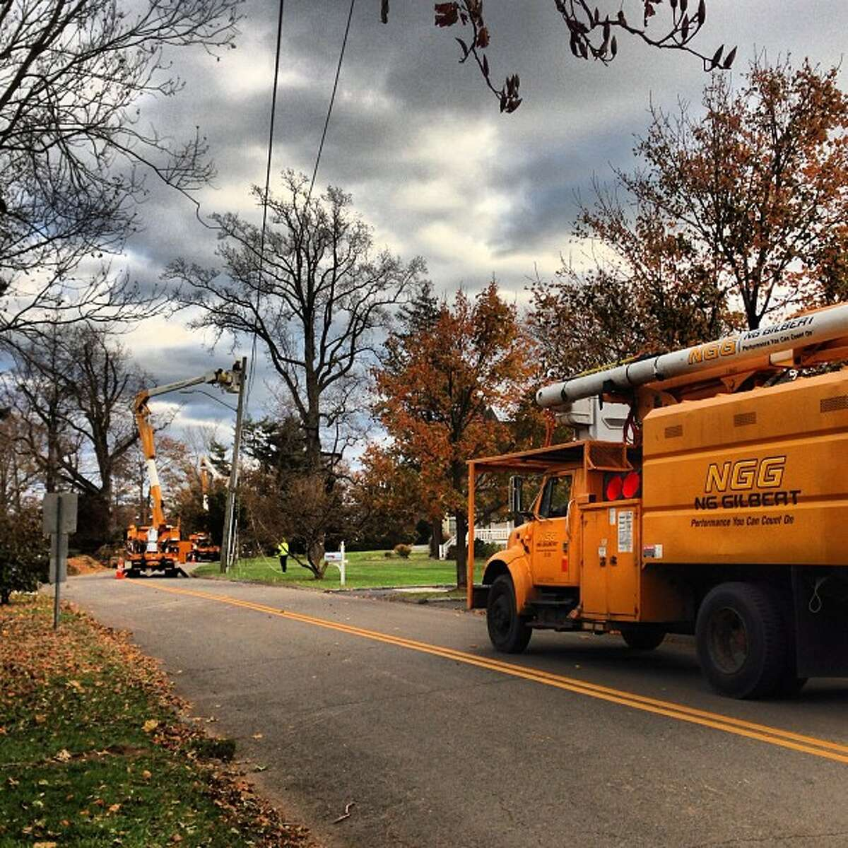 A crew from Indiana works on trees and lines simultaneously in Stamford Saturday. (Photo by Kara Billhardt)