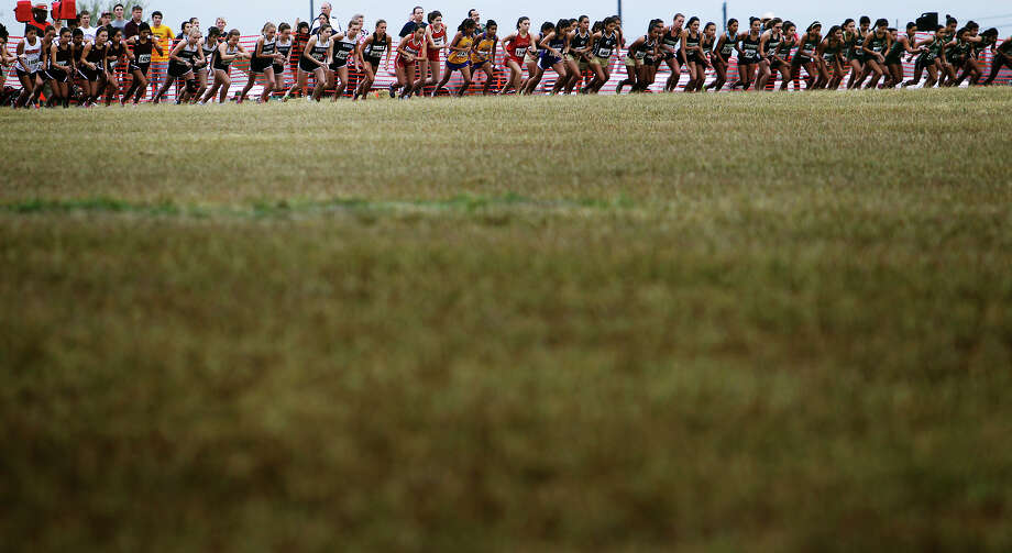Division 5A girls line up to start their race in the Region IV Cross Country Meet on Saturday, Nov. 3, 2012. Photo: Kin Man Hui, Express-News / © 2012 San Antonio Express-News
