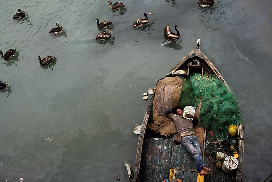 A fisherman takes a nap on his boat after deep sea fishing all night in El Callao, Peru, Nov. 3, 2012.  Small scale fishermen in this area work 24 hour shifts, catching mostly anchovy, mackerel and silverside. Photo: Rodrigo Abd, Associated Press