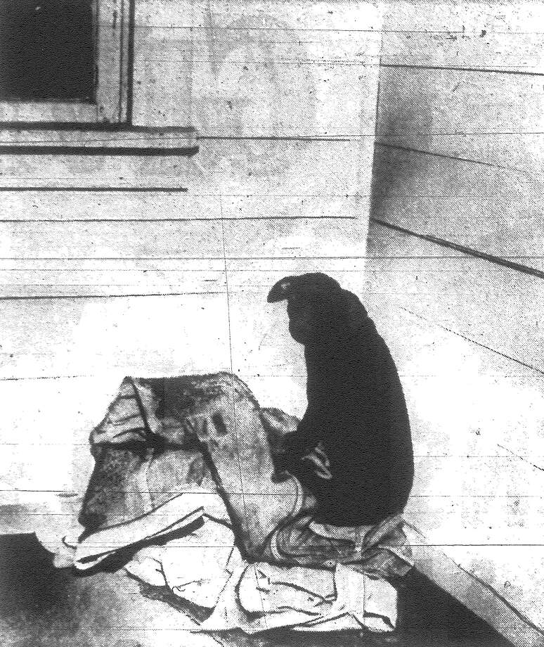 A dog belonging to N.A. Zeinert, who was found shot in the head at his farm home, cringes in a corner of the room they shared. Published in the San Antonio Light Nov. 20, 1962. Photo: File Photo