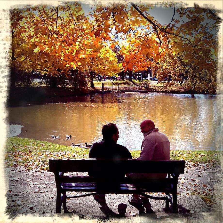 What Sundays are For  Obvious aquaintances but strangers to me.. couldn't help but smile and capture how these two people were taking advantage of a Sunday afternoon Tanya Amodio, Albany The picture was taken in Washington Park on Sunday October 21st.