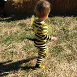 "FINALIST! From Katy M: ""After searching in vain for a decent bee costume without stupid glitter wings and ruffles, I borrowed my son's favorite pajamas paired with Sharpie-colorized Converse and a hand sewn stinger and the Killer Bee was born."""