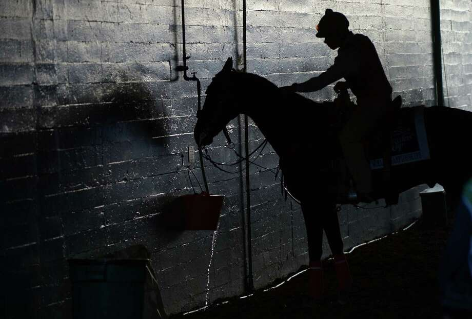 TOPSHOTS A rider offers his horse some water during the Breeders' Cup  at Santa Anita racetrack in Arcadia, California, on November 2, 2012. AFP PHOTO / /JOE KLAMARJOE KLAMAR/AFP/Getty Images Photo: JOE KLAMAR, AFP/Getty Images / AFP