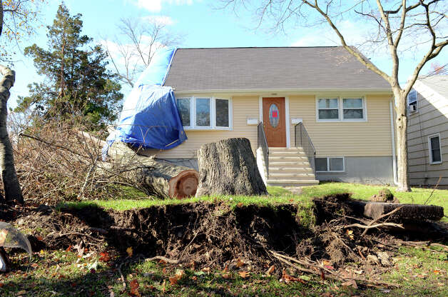 A large tree which crashed through the roof of a home 33 Ponus Ave. in Stamford during Hurricane Sandy is pictured on Saturday, Nov. 3, 2012. Photo: Amy Mortensen / Connecticut Post Freelance