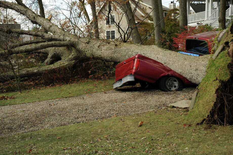 A tree destroys a pick-up truck near Wee Burn Country Club in Darien. Photo contributed by Alan DeSantis. Photo: Contributed Photo