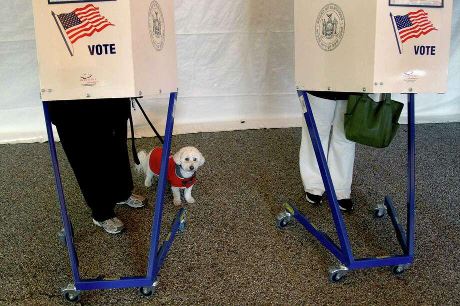 Beegee waits while his owner fills out her ballot at a polling site in a tent in the Midland Beach section of New York's Staten Island,   Tuesday, Nov. 6, 2012. The original polling site, a school, was damaged by Superstorm Sandy. Photo: Seth Wenig, AP / AP