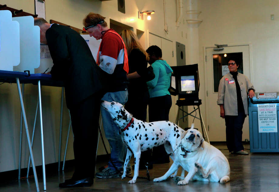 Emma the Dalmatian and Lulu the Labrador observe Gov. Jerry Brown (left) voting near his home in Oakland, Calif. on Tuesday, Nov. 6, 2012. The governor held a news conference to discuss his Prop. 30 school tax initiative after he cast his ballot. Photo: Paul Chinn, The Chronicle / ONLINE_YES