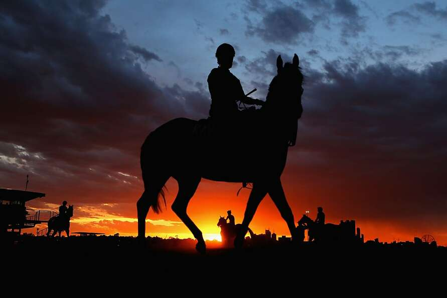 Up early and in the saddle: Riders head out at dawn for track work ahead of the Melbourne Cup