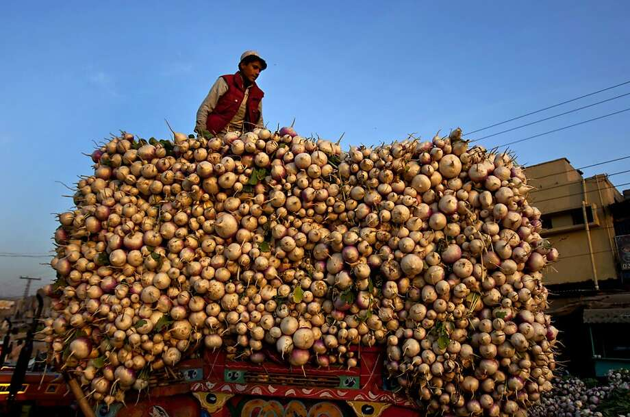This guy didn't just fall off the turnip truck: On the contrary, he's maintaining his balance despite treacherous footing atop hundreds of the root vegetables at a market in Islamabad, Pakistan. Photo: Anjum Naveed, Associated Press