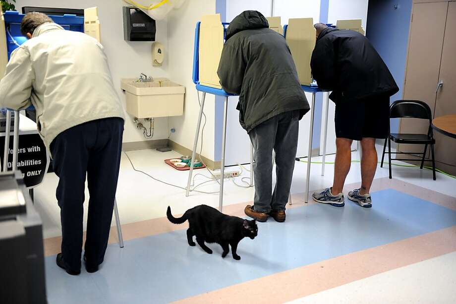 Poll cat:A black cat crosses the path of voters at a polling station in South Bend, Ind. The state was one of the first called for Romney. Photo: Joe Raymond, Associated Press