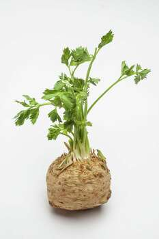 "Celeriac (seh-LER-ee-ack): An edible knobby brown vegetable that's the root of celery. Audio: Click here to hear the term ""Celeriac."" Photo: Michael Paulsen, Staff / Houston Chronicle"