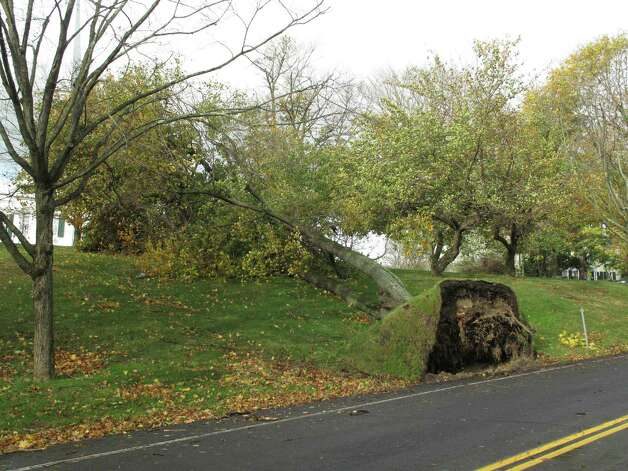 A tree, toppled over by the winds of Hurricane Sandy, exposes its roots on Oenoke Ridge Road. Photo: Tyler Woods