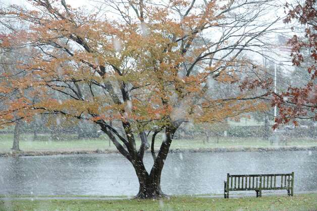 Snow in Binney Park during the Nor'easter, in Old Greenwich, Conn., Wednesday, Nov. 7, 2012. Photo: Helen Neafsey / Greenwich Time