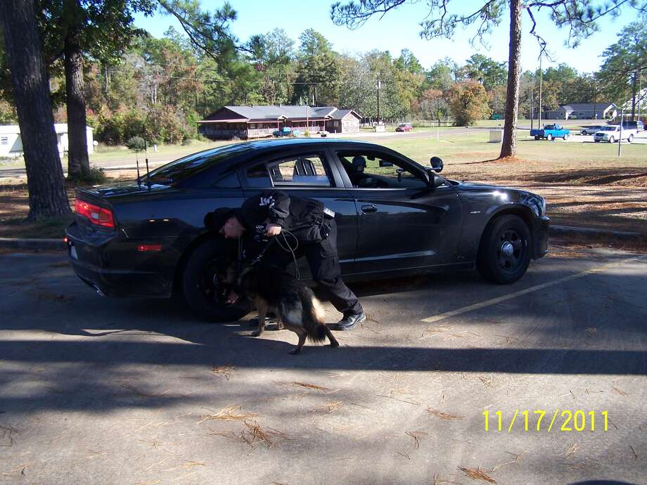 A photo of David Webb's fake police car and trained dog. (govt source)