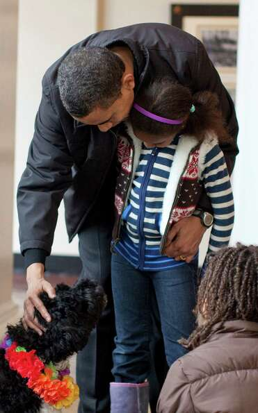 President Barack Obama pets the family's new dog, Bo, a 6-month old Portuguese water dog, as his dau