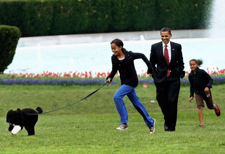 President Barack Obama walks with daughters Malia and Sasha as they take their new Portuguese water dog, Bo, for a walk on the South Lawn of the White House April 14, 2009, in Washington, D.C. Photo: Win McNamee, Getty Images / 2009 Getty Images