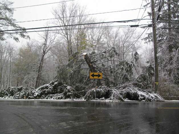 The nor'easter snow combines with Hurricane Sandy debris in the form of this downed tree on Weed Street in New Canaan, Conn. Nov. 7, 2012. Photo: Tyler Woods