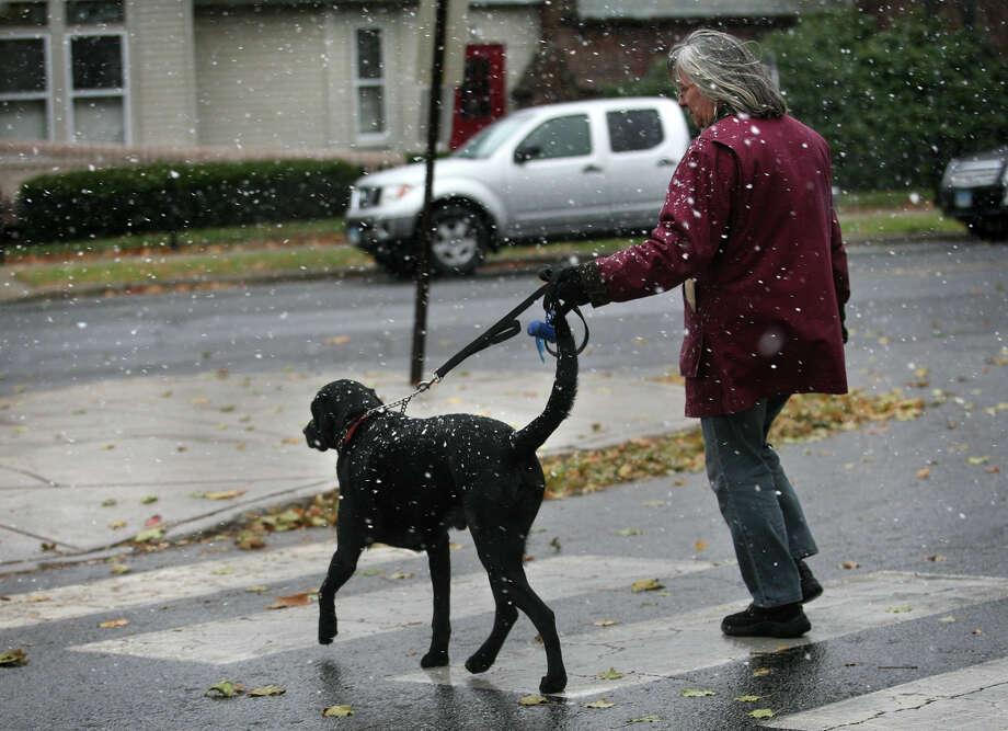 Jenn Lugas of Milford takes her dog Cole for his walk as snow begins to fall in downtown Milford on Wednesday, November 7, 2012. Photo: Brian A. Pounds / Connecticut Post