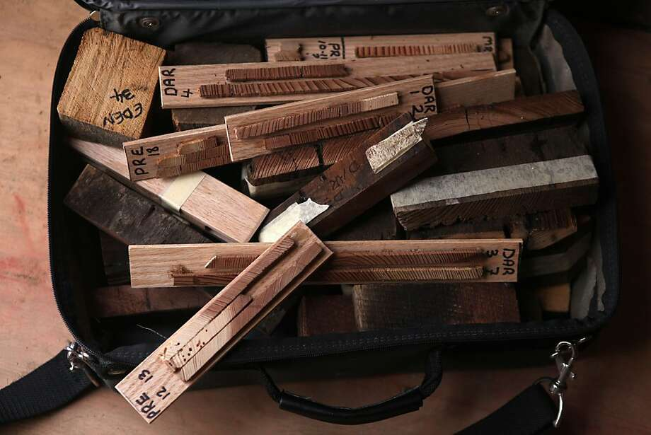 Wood samples from the fort are being compared to trees in the area to determine the source and age of the wood. Photo: Liz Hafalia, The Chronicle