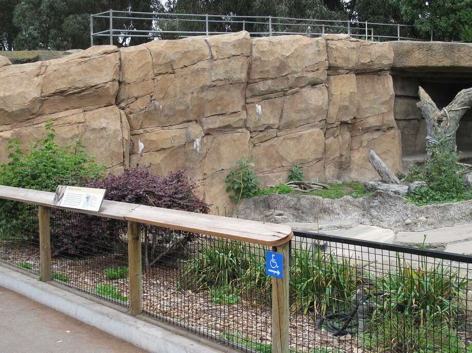 The grizzly bear enclosure was remodeled -- the rocks are different but that railing on the top is the same. The bears are living in a much larger enclosure about 50 feet to the right in the Hearst Grizzly Gulch, opened in 2007. (Peter Hartlaub / The Chronicle)