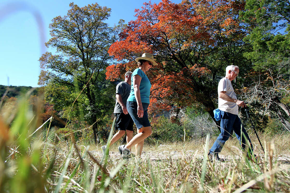 Sighteers approach a colorful area at Lost Maples STate Natural Area on November 7, 2012.