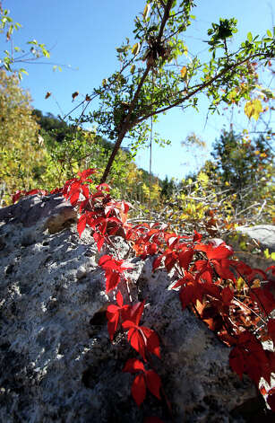 Lost Maples STate Natural Area on November 7, 2012. Photo: Tom Reel, San Antonio Express-News / ©2012 San Antono Express-News