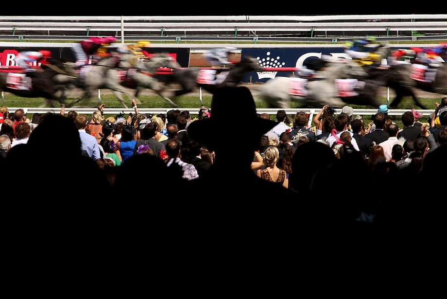 Racegoers watch the races on Crown Oaks Day at Flemington Racecourse on November 8, 2012 in Melbourne, Australia. Photo: Robert Prezioso