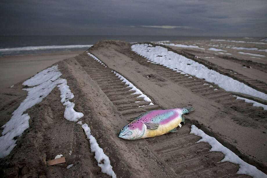 A stuffed fish is left on a beach next to a pile of debris from Superstorm Sandy November 8, 2012 in Long Branch, New Jersey. The storm brought gusting winds, rain, and snow and forced the cancelation of flights for thousands of passengers flying into and out of JFK, LaGuardia and Newark. Photo: Allison Joyce, Getty Images