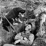 A U.S. Marine is seen as he chats with his scouting dog, at Guam, in August 1944, during World War II. The dogs were used to track down Japanese soldiers hidden in caves or jungle strongholds, and for running messages.